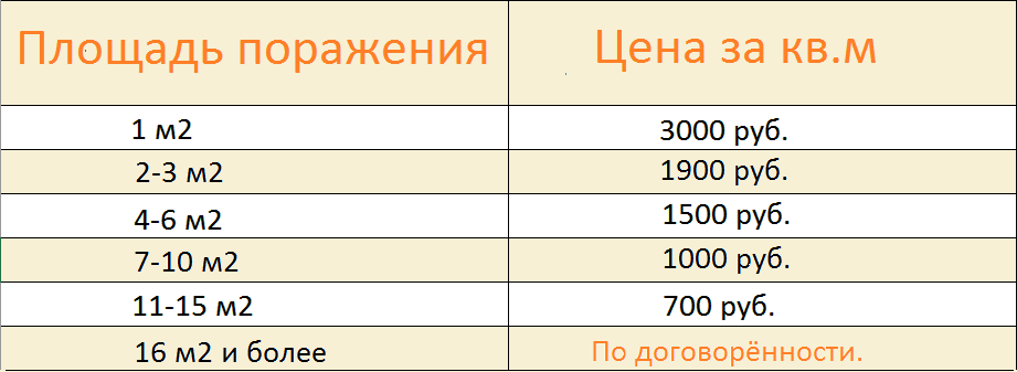 tsena_unichtozhenie_pleseni