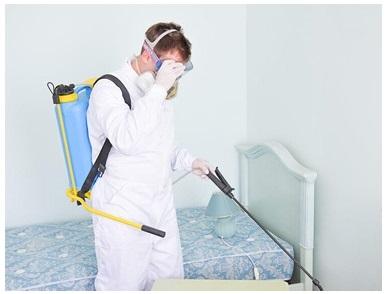 Как сделать дезинфекцию квартиры