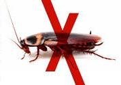Уничтожение тараканов Дзержинский