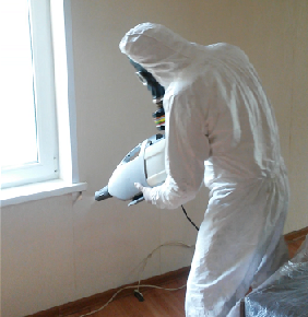 уничтожение клопов в общежитии фото