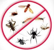 dezinfekciya-v-moskve
